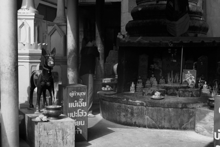 SHRINE VISIT, 2005